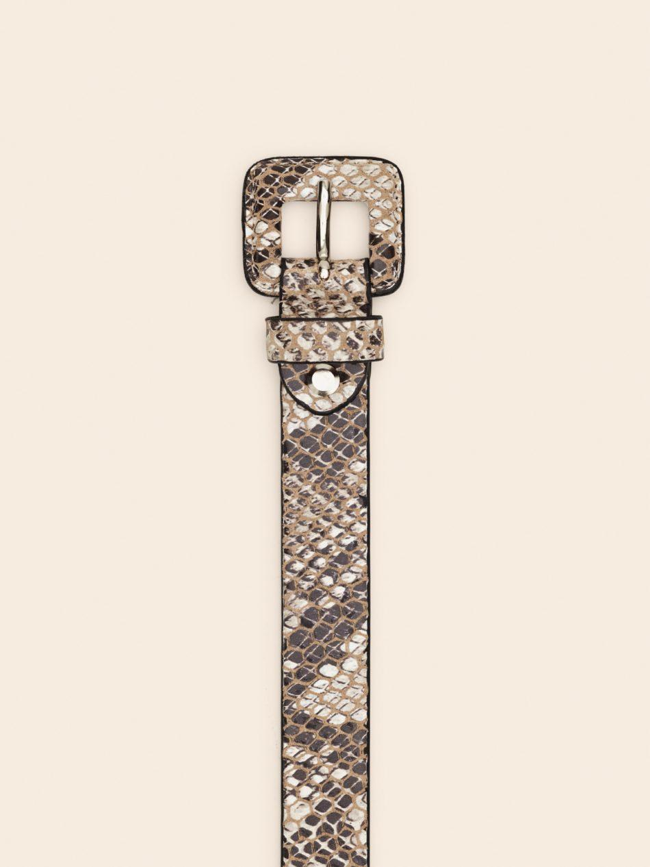 belte-snake